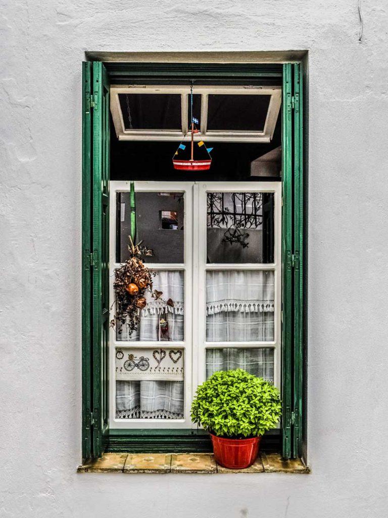 window with basil pot